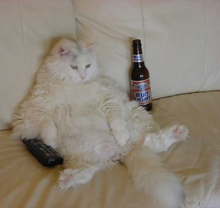 Chillin, Watching TV