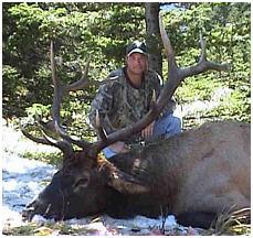 Elk Hunting - Alberta