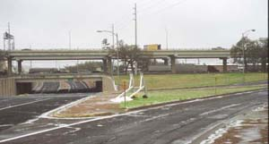 Austin Ice Storm - January 2007